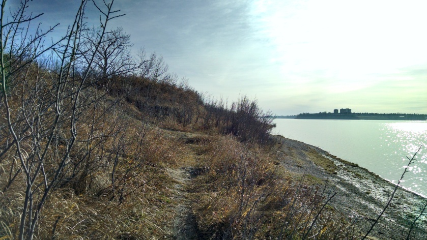 Trails along the water's edge