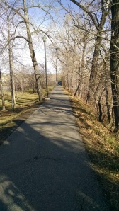 Calgary trail running