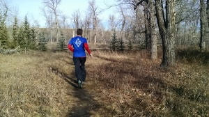 Single track along the creek