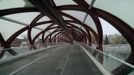 Peace Bridge - Nov 2014
