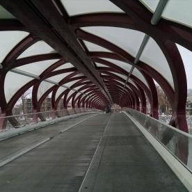 Peace Bridge - Nov 2014