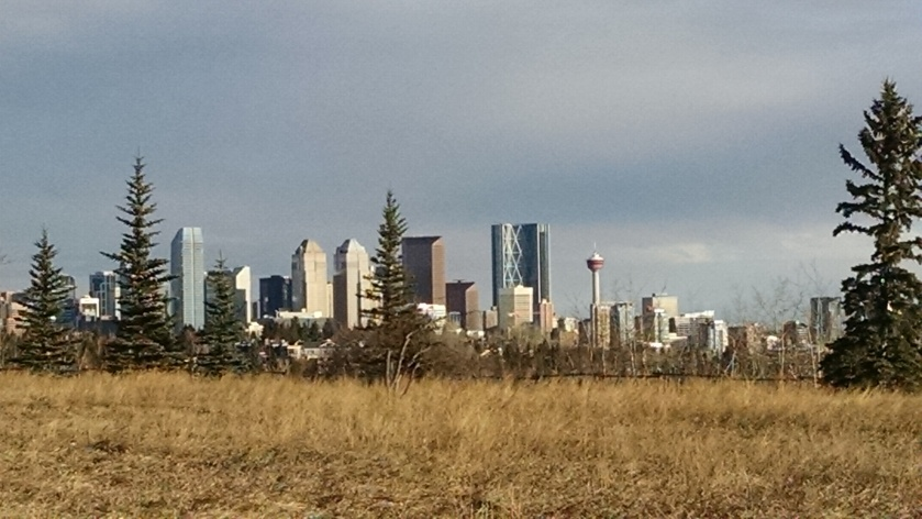 Downtown Calgary seen from Glenmore Athletic Park