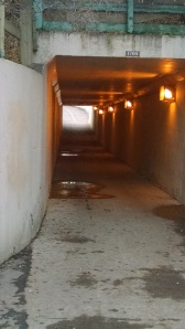 Tunnel along Calgary trails