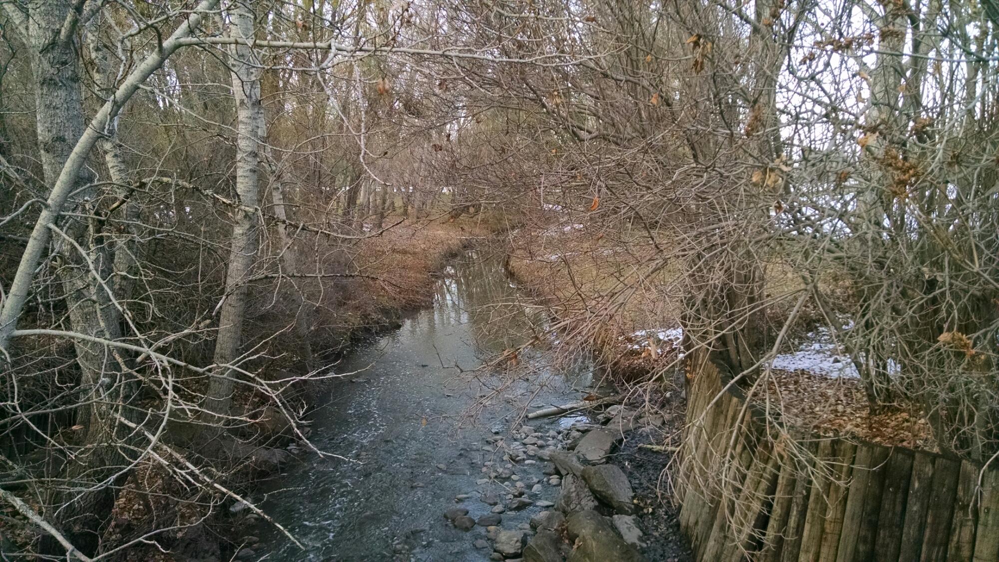 water along Calgary trails