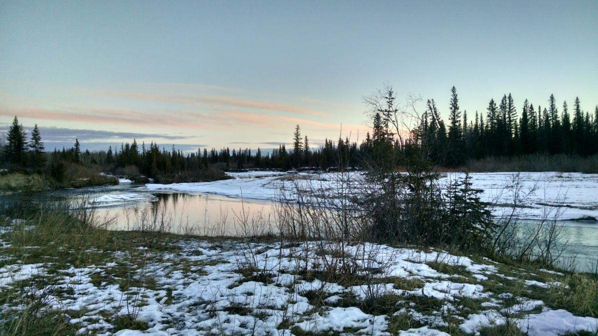 Frozen wetlands have nomosquitos