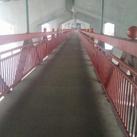 Crowchild Trail