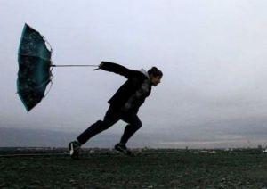 Windy-Storm