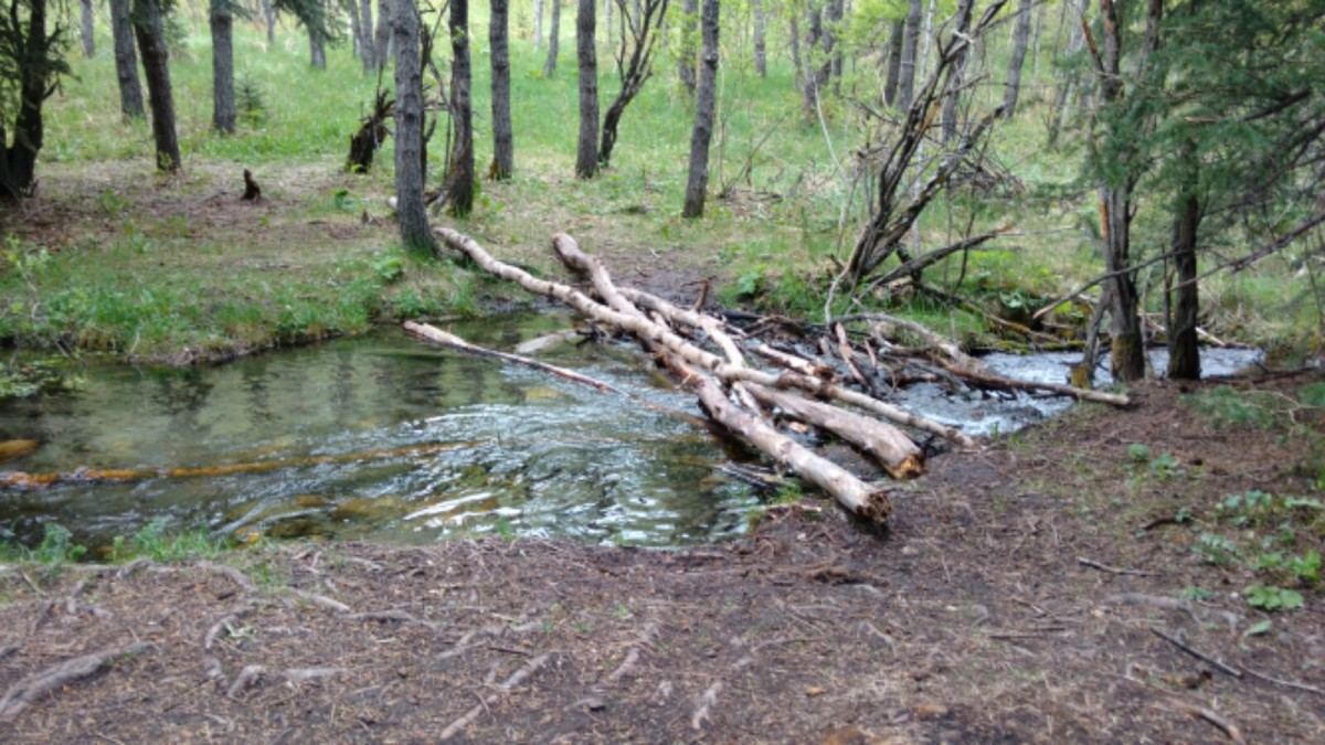 Big Hill Springs – Places to Run (ornot)